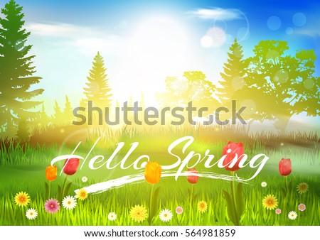 spring background hello