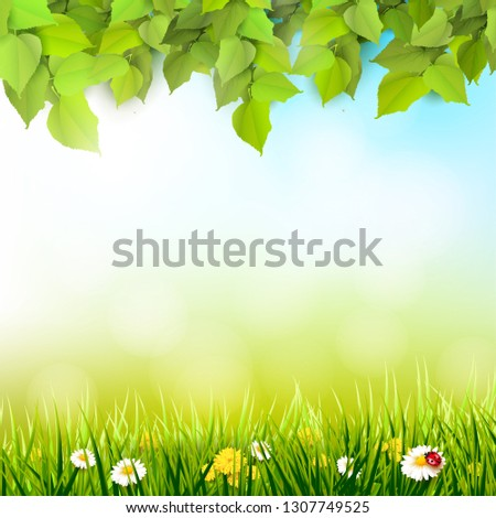 spring background leaves and