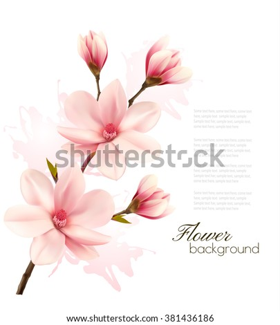 spring background with blossom