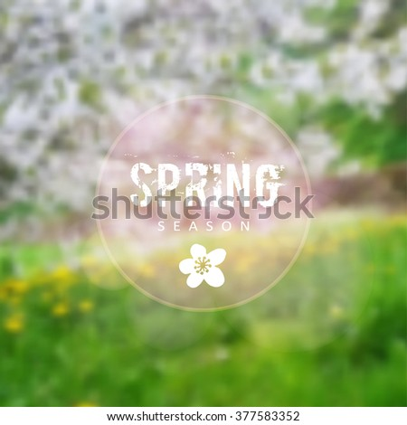 Stock Photo Spring background with blurred blossoming cherry trees and meadow with yellow blooming dandelions, vector illustration