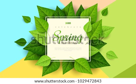 Spring background with green leaves and square frame on trendy geometric backdrop. Vector illustration. Fresh template design for posters, flyers, brochures or vouchers. #1029472843
