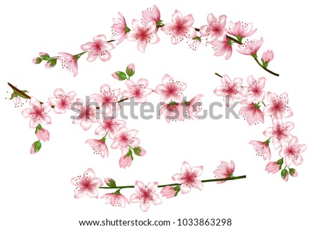 spring bloom branches with pink