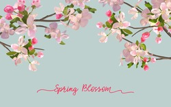 Spring blossom background with blooming pink flowers in a horizontal banner