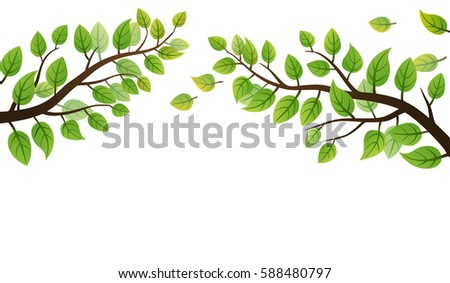 Spring branch with green leaves on white background
