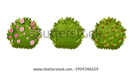 Spring bush, shrub green garden cartoon hedge set with green leaves, flower blossom,berries. Summer landscape nature cartoon objects collection isolated on white. Spring round bush plants floral icons Foto d'archivio ©
