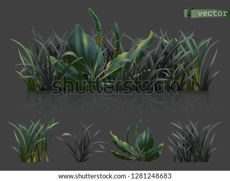 Spring. Dark green grass, 3d realistic vector icon set