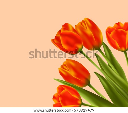 spring flower background with