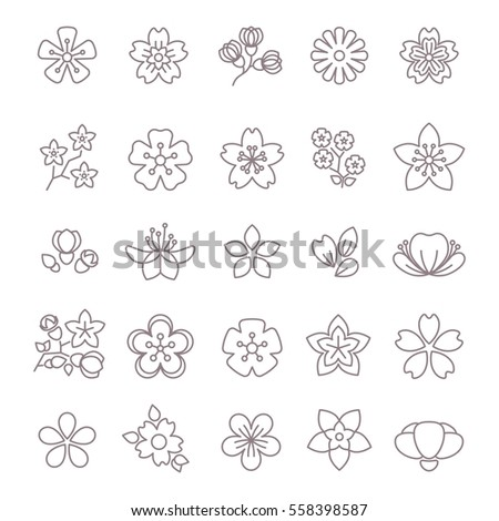 Spring flower thin line vector icons set. Floral flower with petal, collection of blossom flowers illustration.