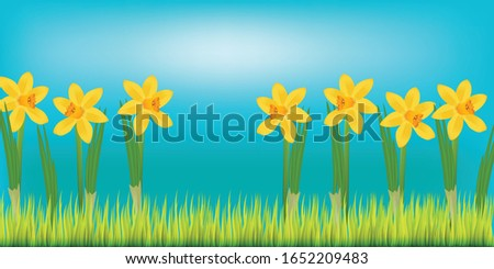 spring flyer with daffodils