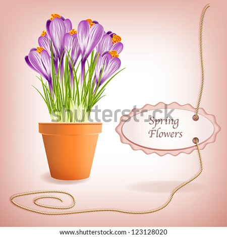 Spring Gardening. Garden flower pot with spring crocuses and label on rope with space for your text. Vector eps10 illustration. Raster file included in portfolio