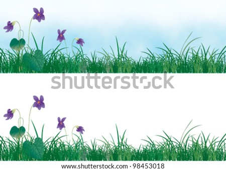 spring grass and violets
