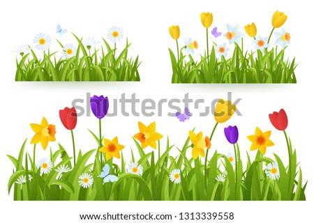 spring grass border with early