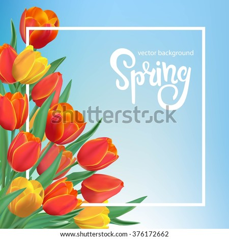 spring illustration with red