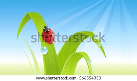 spring ladybug banner border