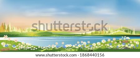 spring landscape morning in