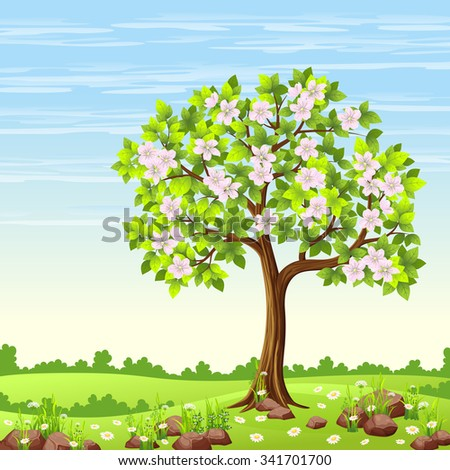 spring landscape with tree and