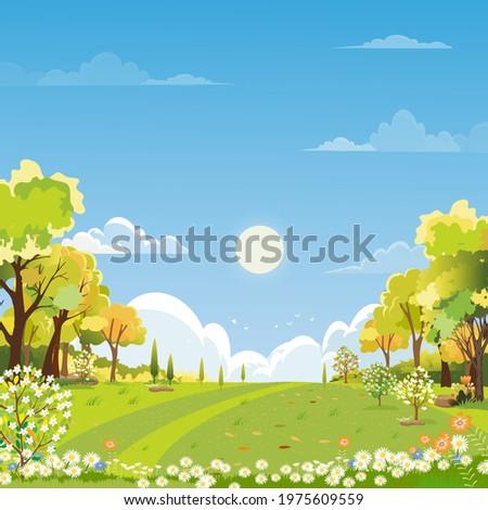 spring landscape wonderland