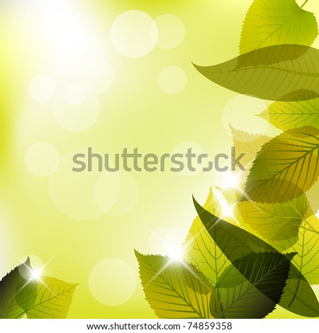 spring leafs abstract