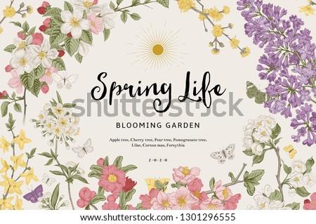 Spring life. Vintage vector botanical illustration. Colorful