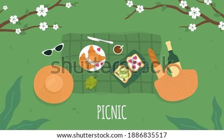 Spring Picnic. Avocado toast. Summer Picnic background. Vector Сток-фото ©