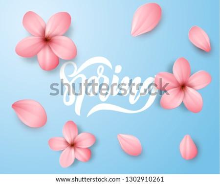 spring pink sakura flowers