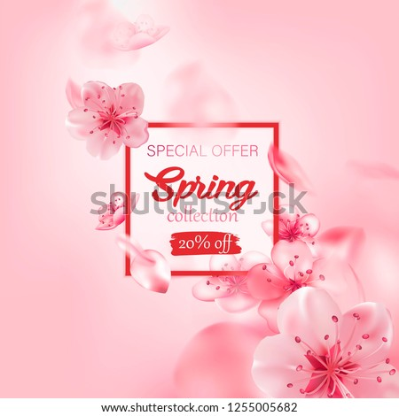 Spring sale vector illustration with cherry blossom flowers, flying petals. Pink sakura.