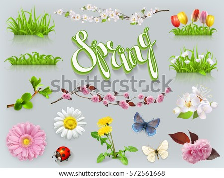 Spring set. Grass and flowers 3d vector icon
