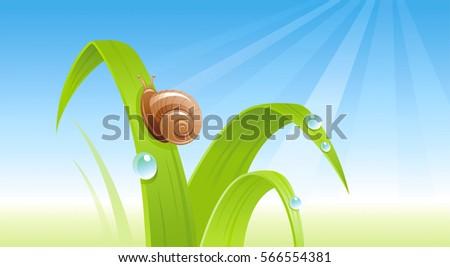 spring snail banner border