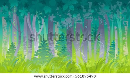 spring summer forest landscape