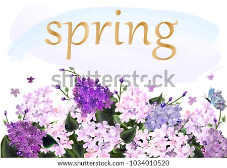 Spring time greeing card. Frame with lilac
