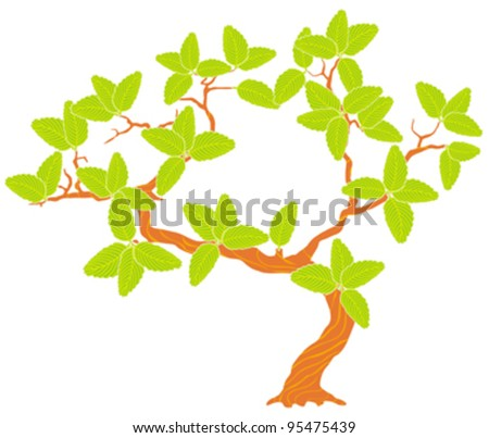 spring tree with green leaves, isolated on white - stock vector