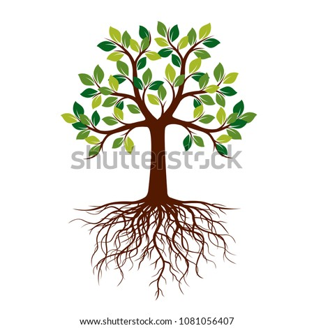 Spring Tree with green Leaves. Vector Illustration. Plants in garden.
