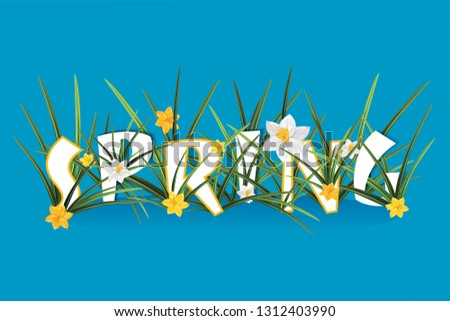 Spring Word Typography Concept in paper cut style. White and yellow narcissus. Foliage lettering. Cutout letters with colorful paper daffodils flowers. Typographic poster design.
