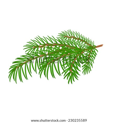 Spruce Christmas tree symbol celebration  white background vector illustration #230235589