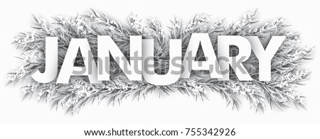 Spruce frozen twigs with the text January. Eps 10 vector file.