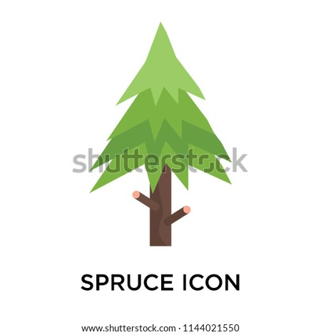Spruce icon vector isolated on white background for your web and mobile app design, Spruce logo concept