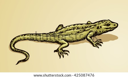 squamate old reptiles