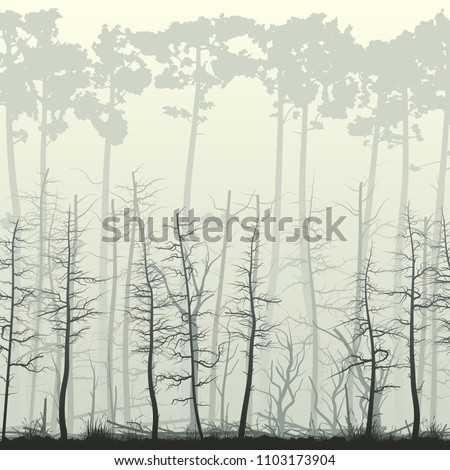 Square illustration of swamp forest with many tree trunks (coniferous, deadwood, driftwood).
