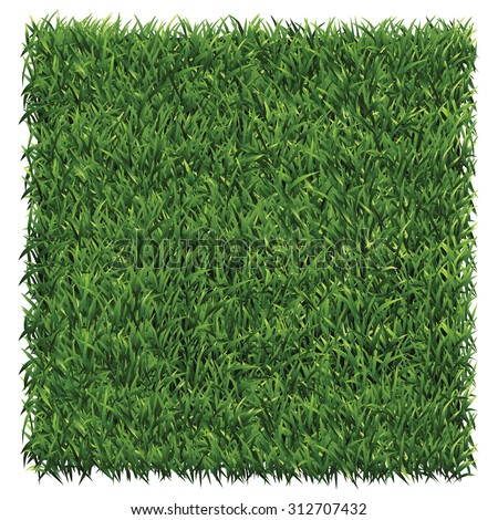square of dark green grass a