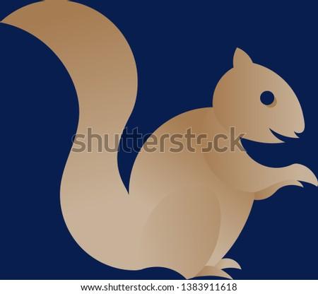 squirrel animal illustration on