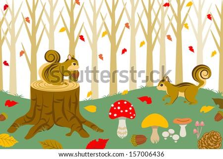 squirrel harvesting in autumn