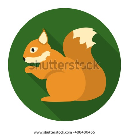 squirrel vector icon in flat