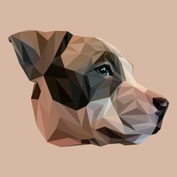 Stafford low poly design. Triangle vector illustration.