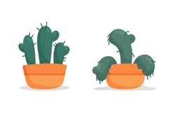 Stages of withering, a wilted cactus in a vase, abandoned plant without watering and care. Succulent dying. Vector illustration, handdrawn organic flat style