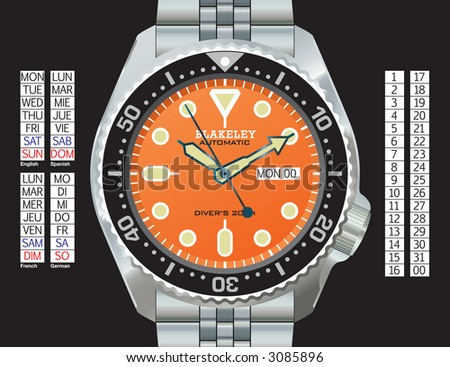 stainless steel diver's watch