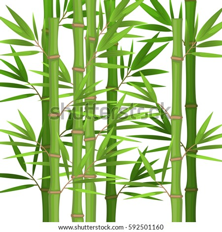 stalks of bamboo with green