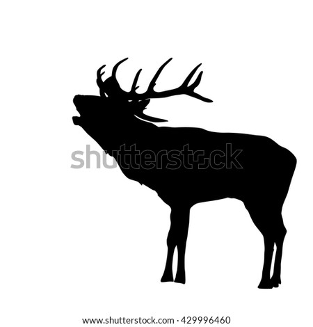 standing deer silhouette on white background