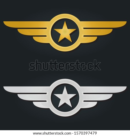 Star with wings logo. Military and Army winged badges. Golden and Silver Aviation emblems. Vector illustration.