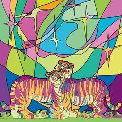Stars. Northern Lights. Tigers. Vector illustration.