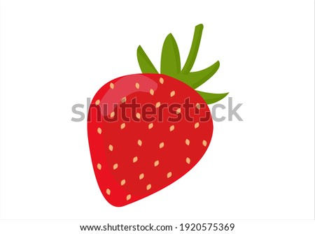 Stawberry red summer fruit, white background. Vector graphic illustration. Vegetarian cafe print, poster, card. Natural, organic dessert sweet, fresh berry